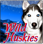 wild-huskies_small.png
